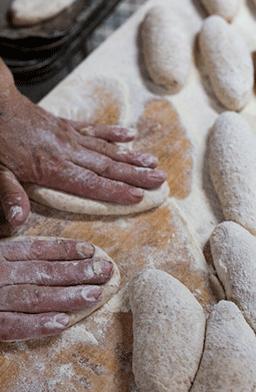 Formación del pan